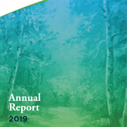 Annual Reports & Audited Accounts image